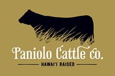 Paniolo Cattle
